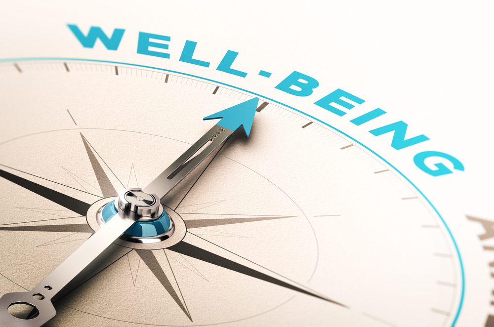 Wellbeing Compass